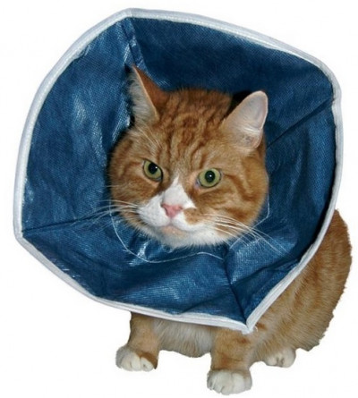 Kruuse защитный воротник для кошек и маленьких собак мягкий
